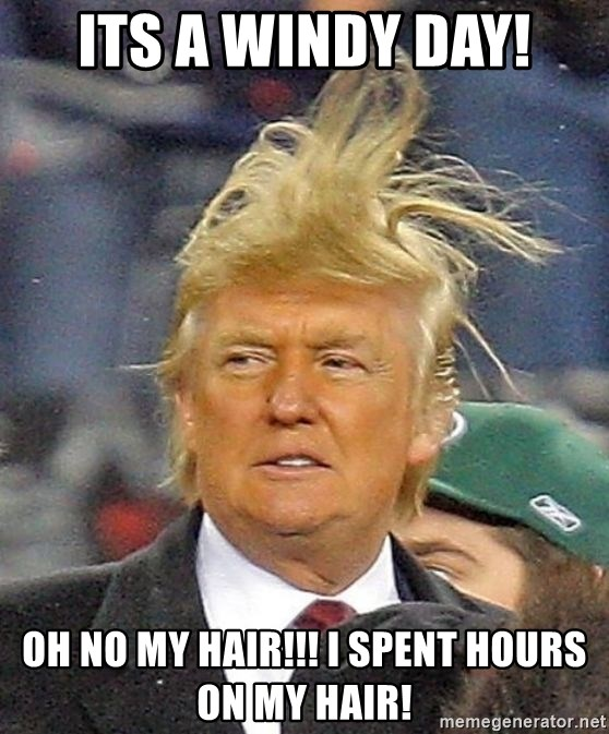 Donald Trump wild hair - ITS A WINDY DAY! OH NO MY HAIR!!! I SPENT HOURS ON MY HAIR!