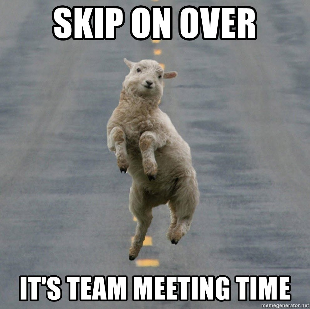 Excited Sheep - Skip on over It's team meeting time