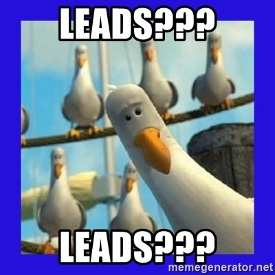 mine seagull - Leads??? LEads???