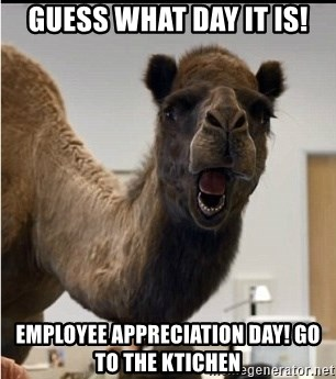 75929903 guess what day it is! employee appreciation day! go to the ktichen