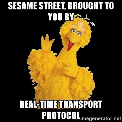 BIG BIRD meme - sesame street, brought to you by real-time transport protocol