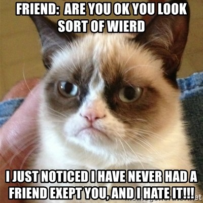 Grumpy Cat  - FRIEND:  ARE YOU OK YOU LOOK SORT OF WIERD I JUST NOTICED i have never had a friend exept you, AND I HATE IT!!!