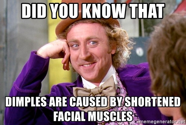 Willy Wonka - Did you know that Dimples are caused by shortened facial muscles