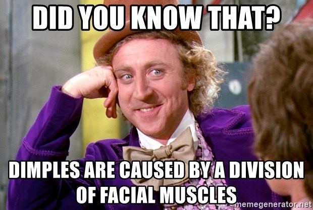 Willy Wonka - Did you know that? Dimples are caused by a division of facial muscles