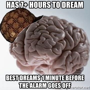 Scumbag Brain - Has 7+ Hours To Dream Best Dreams 1 Minute BEFORE THE Alarm Goes Off