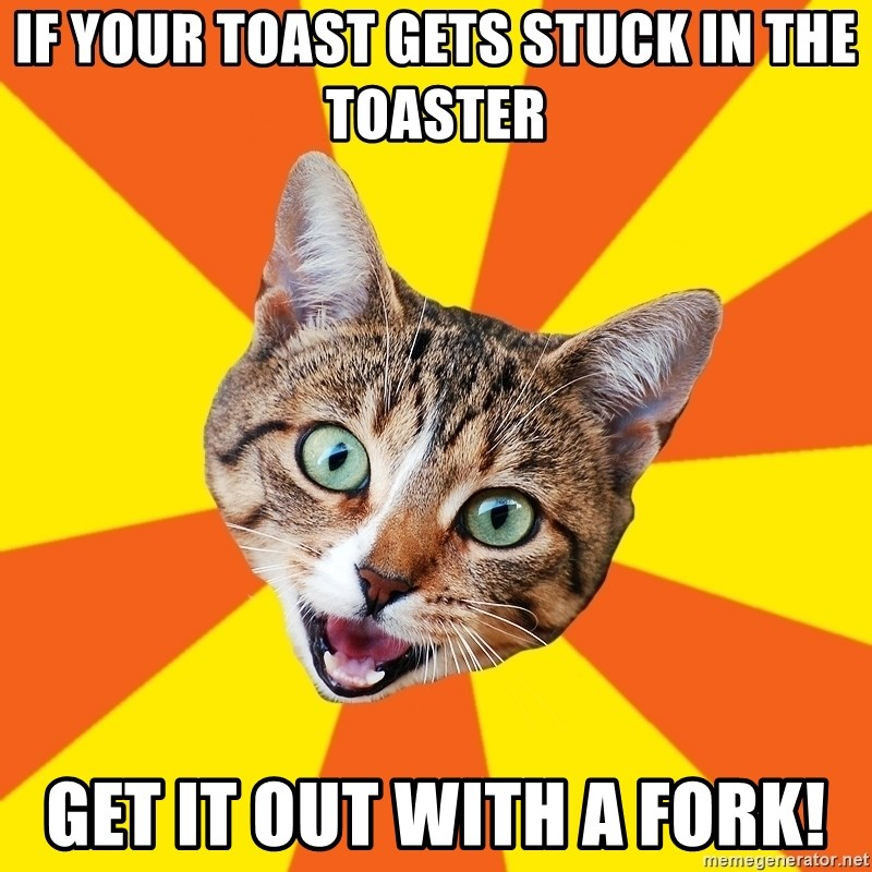 Bad Advice Cat - if your toast gets stuck in the toaster get it out with a fork!