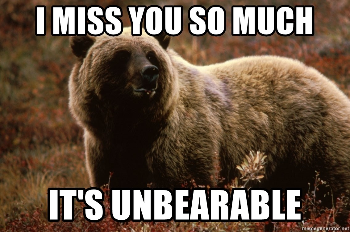 I Miss You So Much Its Unbearable Grizzly Bear Meme Generator