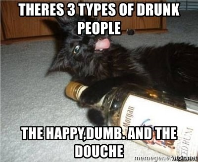 cattttsafadf - Theres 3 types of drunk people the happy,dumb. and the douche