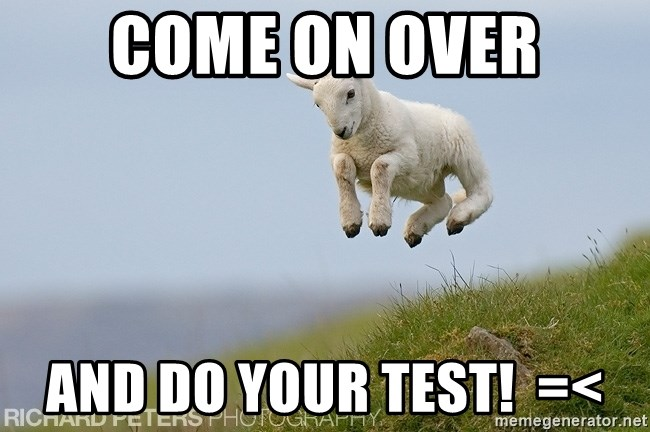 hsrghstrjsr - come on over AND DO YOUR TEST!  =<