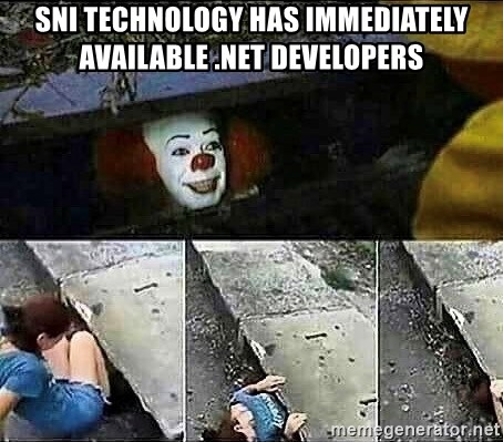 Stephen King IT Clown Sewer - SNI Technology has immediately available .Net Developers