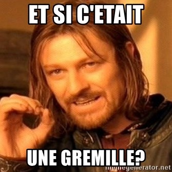 One Does Not Simply - ET SI C'ETAIT UNE GREMILLE?