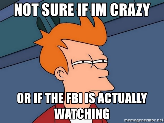 Futurama Fry - Not sure if Im crazy Or if the fbi is actually watching