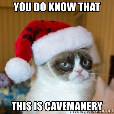 Grumpy Cat Santa Hat - you do know that  this is cavemanery