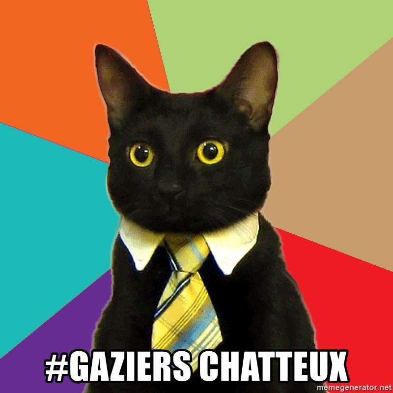 Business Cat -  #gaziers Chatteux