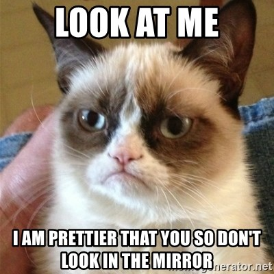 Grumpy Cat  - look at me I am prettier that you so don't look in the mirror