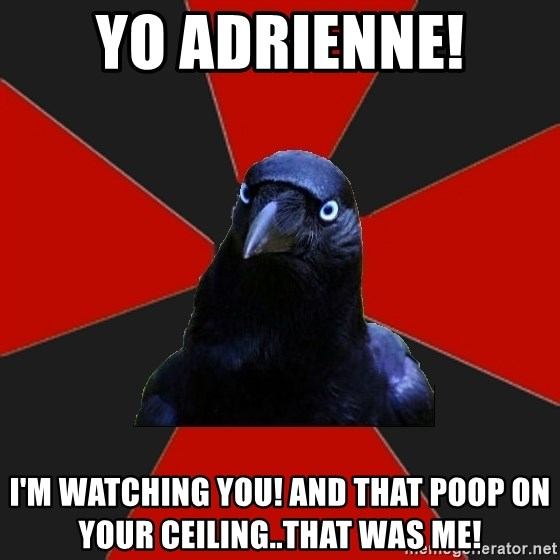 Gothiccrow - Yo aDrienne! I'm watching you! And that poop on your ceIling..that was me!