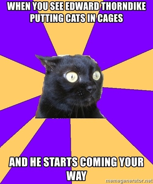 Anxiety Cat - When you see Edward thorndike putting cats in cages  and he starts coming your way