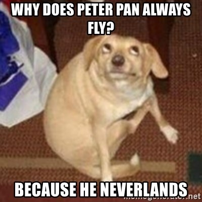 Oh You Dog - why does peter pan always fly? because he neverlands