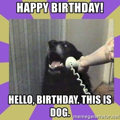 Yes, this is dog! - Happy birthday! Hello, birthday. This is dog.