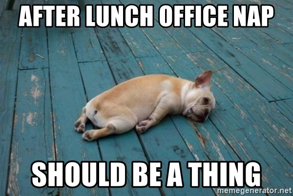 After Lunch Office Nap Should Be A Thing Doggo Meme Meme Generator