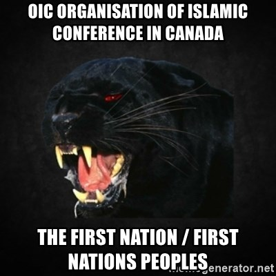 Roleplay Panther - OIC Organisation of Islamic Conference in Canada The First Nation / First Nations Peoples