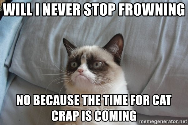 will i never stop frowning no because the time for cat crap is