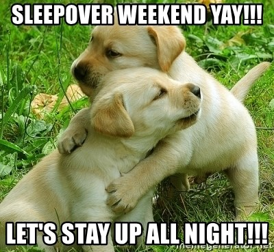 Sleepover Weekend Yay Let S Stay Up All Night Hugging Puppies Meme Generator At memesmonkey.com find thousands of memes categorized into thousands of yay!, happy puppy, meme generator. sleepover weekend yay let s stay up