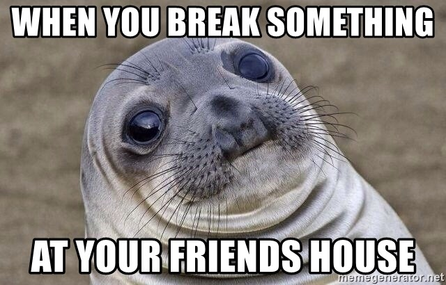 Awkward Seal - When yOu break something  At your friends house