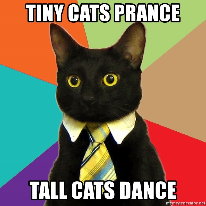 Business Cat - TIny cats prance TAll caTs dance