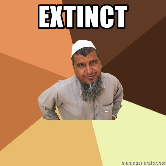 Ordinary Muslim Man - extinct