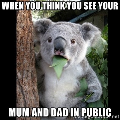 Koala can't believe it - When you think you see your Mum and dad in public