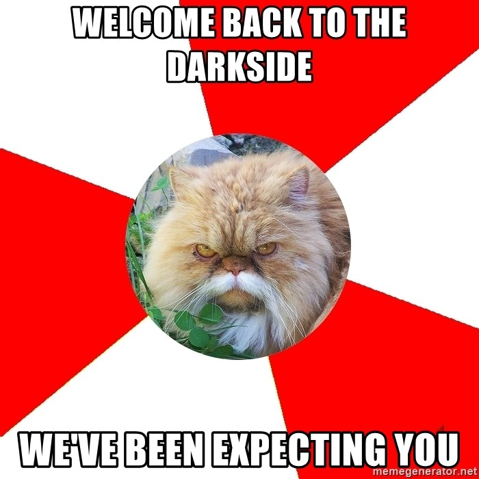 Diabetic Cat - wELCOME BACK TO THE dARKSIDE wE'VE bEEN EXPECTING YOU