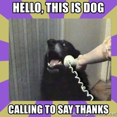Yes, this is dog! - Hello, this is dog Calling to say thanks