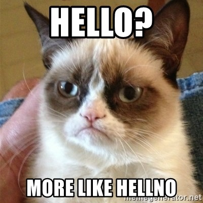 Grumpy Cat  - Hello? More like hellno