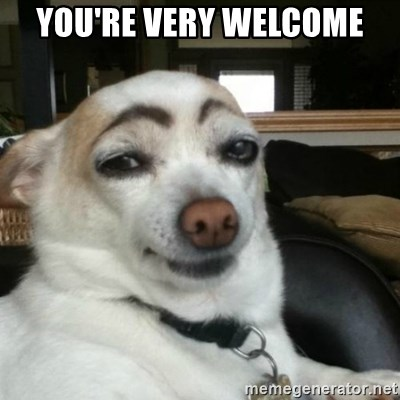 you're very welcome - Eyebrows Dog   Meme Generator  you're very...