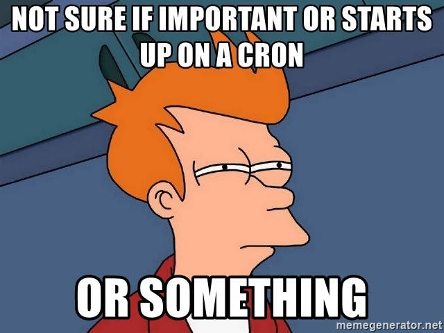 Futurama Fry - not sure if important or starts up on a cron or something