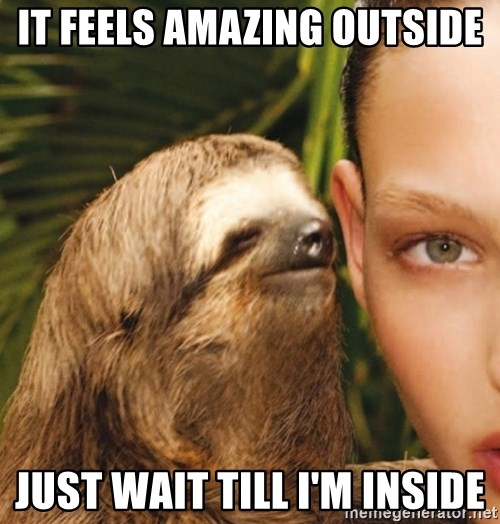 The Rape Sloth - It feels amazing outside Just wait till i'm inside