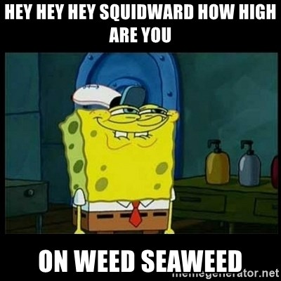 Don't you, Squidward? - Hey hey hey squidward how high Are you On weed seaweed