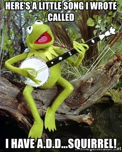 kermit the frog banjo - Here's a little song i WROTe called I have a.d.d...squirrel!