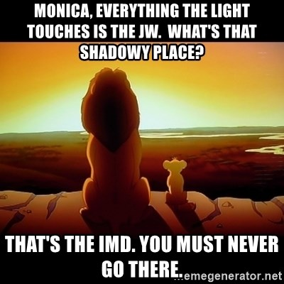 Simba - Monica, everything the light touches is the JW.  What's that shadowy place? That's the IMD. You must never go there.