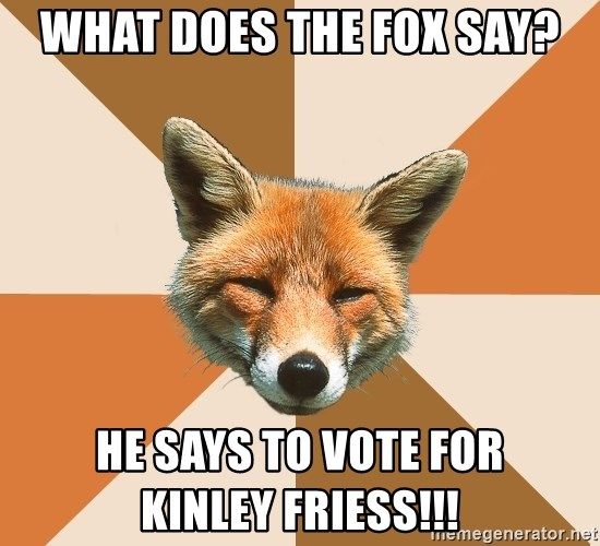 Condescending Fox - what does the fox say? He says to vote for            kinley friess!!!