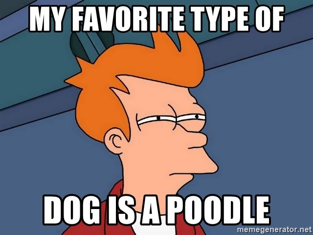 Futurama Fry - my favorite type of dog is a poodle