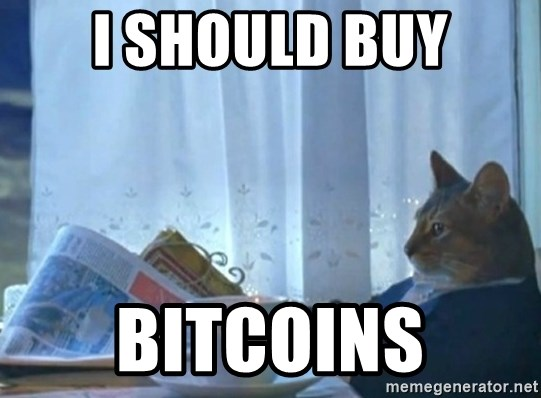 newspaper cat realization - I should buy BitcoIns