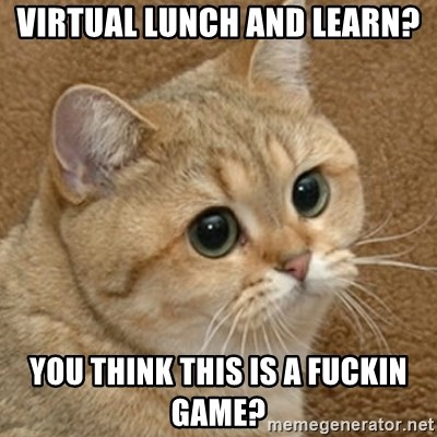 motherfucking game cat - Virtual Lunch and Learn? You think this is a fuckin Game?