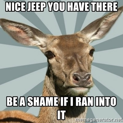 Comox Valley Deer - Nice jeep you HAVe there Be a shame if i ran into it