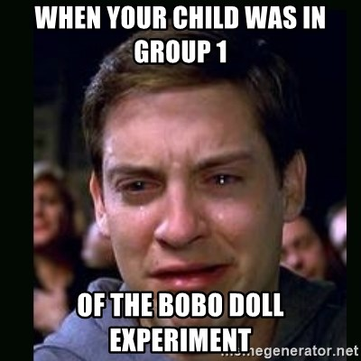 When Your Child Was In Group 1 Of The Bobo Doll Experiment Crying