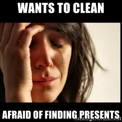 First World Problems - wants to clean afraid of finding presents