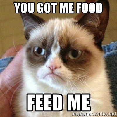Grumpy Cat  - you got me food  feed me