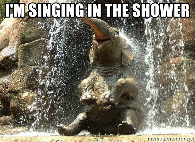 happy elephant shower - i'm singing in the shower