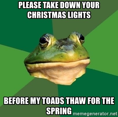 please take down your christmas lights before my toads thaw for the spring foul bachelor frog meme generator - When To Take Down Christmas Lights